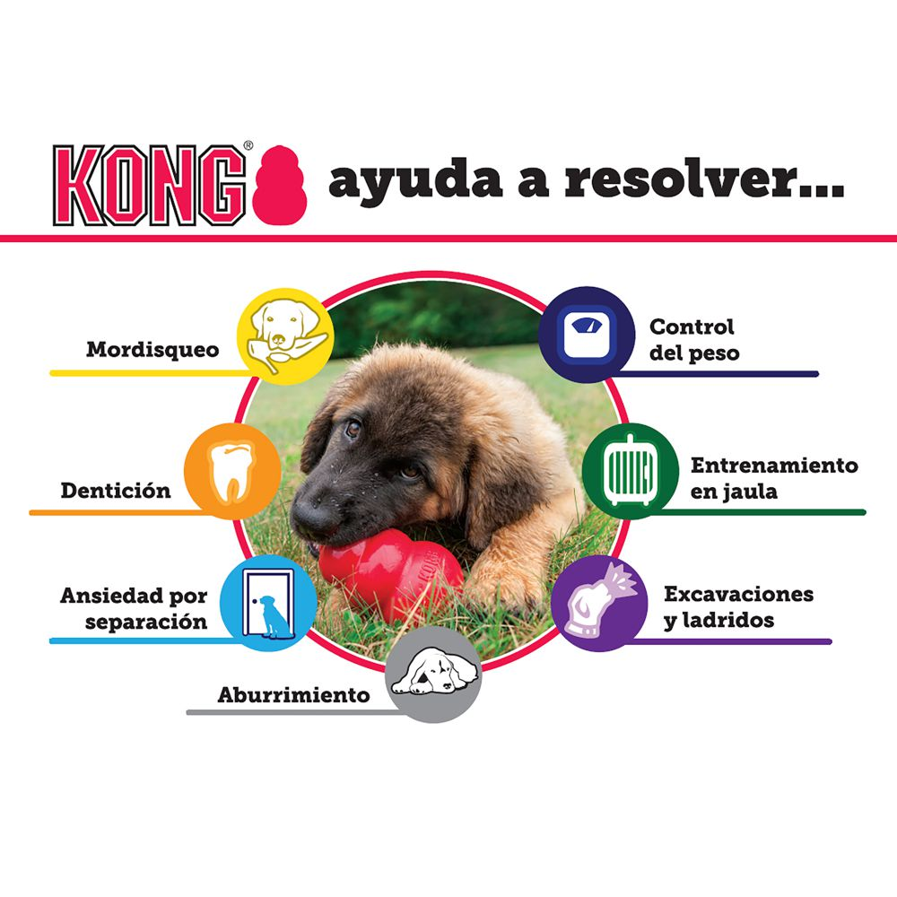 1.1.3. Kong Puppy-3
