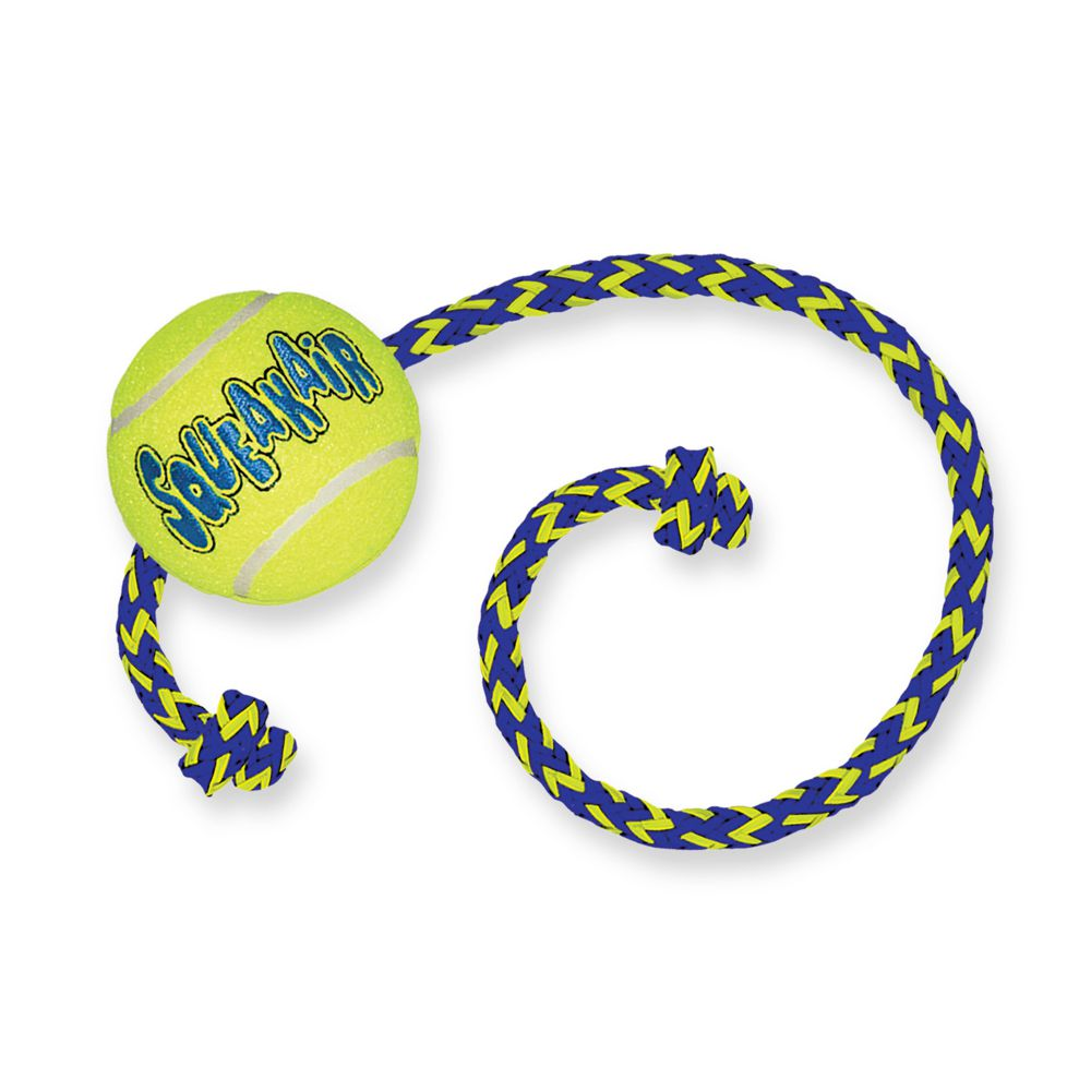 1.4.2. SqueakAir Balls with Rope-1